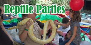 Reptile_Parties_sm