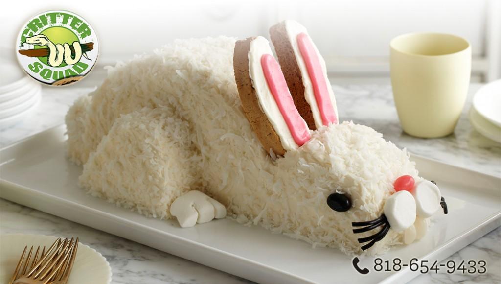 Bunny Party Supplies